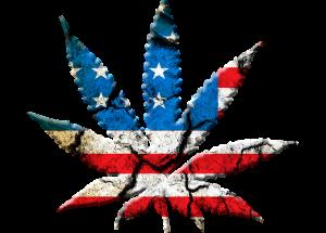 marijuana-leaf-694336_640
